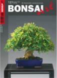 Die aktuelle BONSAI ART