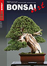 BONSAI ART 157