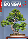 BONSAI ART 156 Thumb