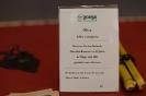 Der Bonsaiarbeitskreis Weserbergland richtete 2017 die BCD Bundesversammlung im Weserbergland Zentrum in Hameln aus. Die [SHOHIN PASSION] 2017 findet diesmal im Rahmen der Bundesversammlung des Bonsai-Club Deutschland in Hameln im Weserbergland Zentrum statt. Fotos: Anke Sundermeier - foto&grafik_32
