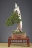 Noelanders Trophy 2010_21