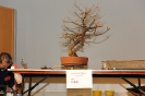 Noelanders Trophy 2011 Demos_46