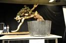 Noelanders Trophy 2011 Demos_65