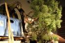 Noelanders Trophy 2011 Demos_71