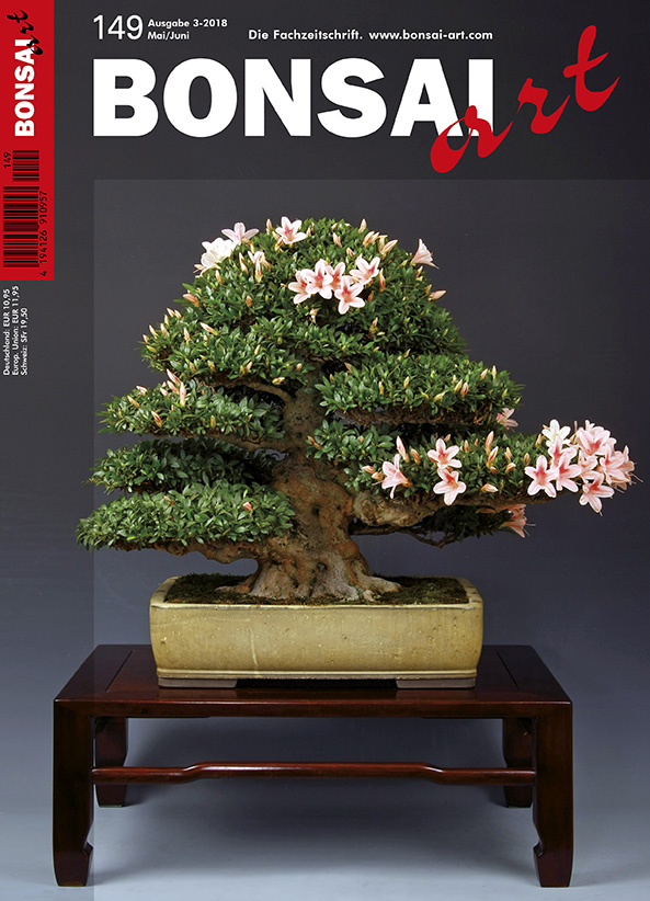 bonsai art start. Black Bedroom Furniture Sets. Home Design Ideas