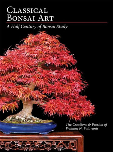 Classical Bonsai Art